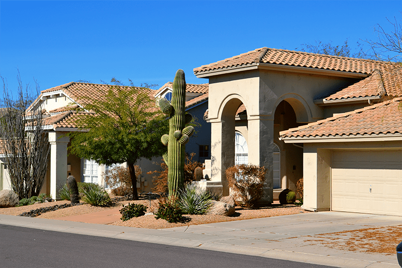 Arizona Leads Country Amidst Equity Surges